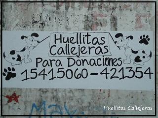 Conocemos la historia de Huellitas Callejeras. Esfuerzo y solidaridad.