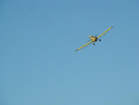 Video de Avión fumigador en la Expo.