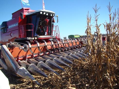 En la comercialización de granos campaña 16/17, la soja avanza por la escalera, trigo y maíz por el ascensor.