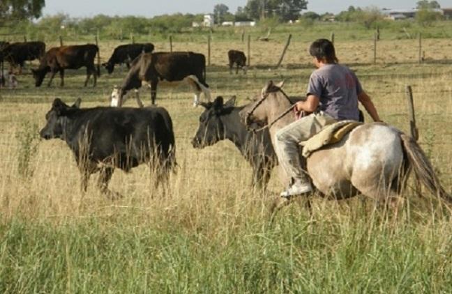 Día del Trabajador Rural.