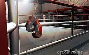 Noche de boxeo
