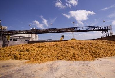 La burlanda de maíz reajusta dietas y costos