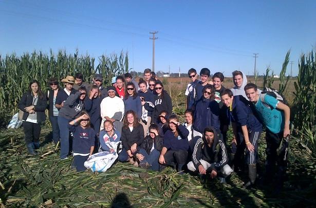Chocleada solidaria: cosecha de maíz seco