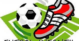 Futbol Inferiores logo
