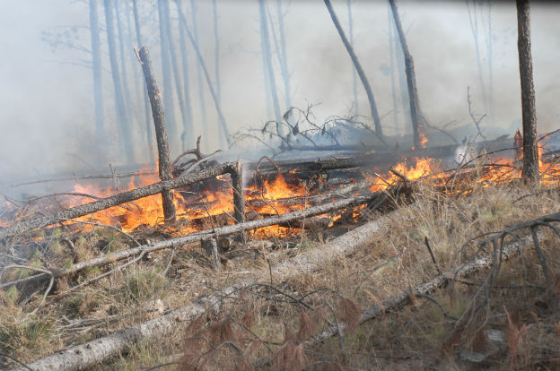 Hasta el sábado es EXTREMO el riesgo de incendio en la provincia