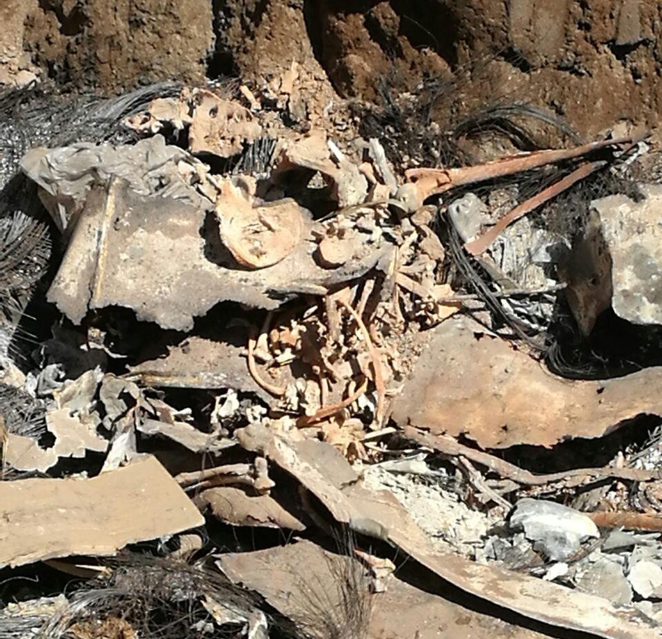 Desmienten que los restos óseos sean de un ser humano