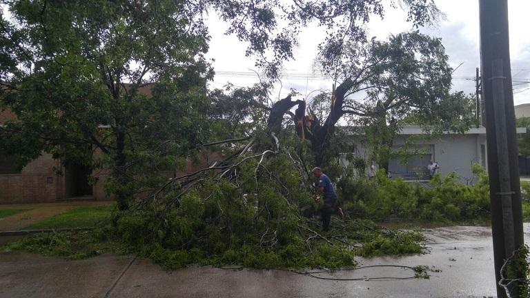 Intensa tarea de Defensa Civil tras la tormenta