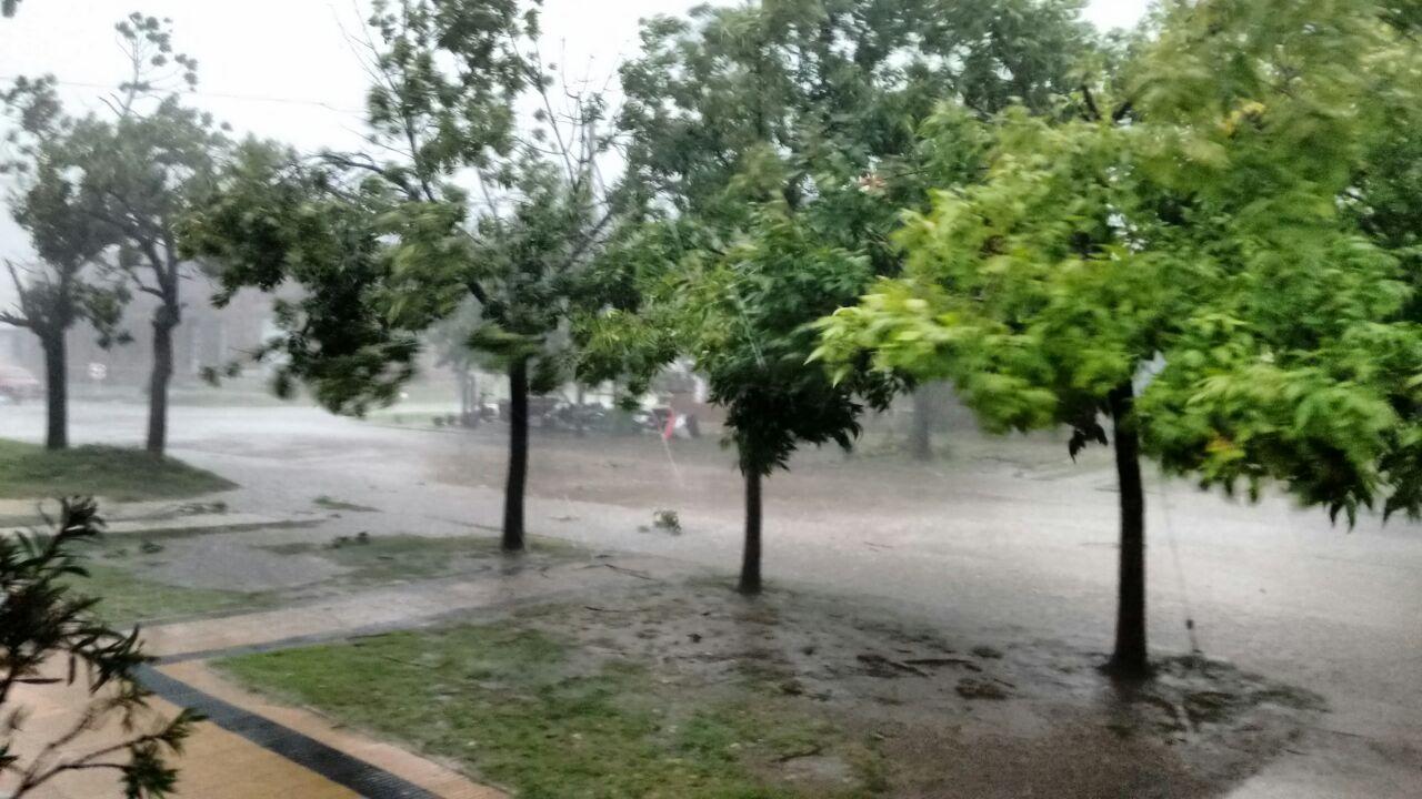 La Carlota sufrió una fuerte tormenta. Fotos y videos