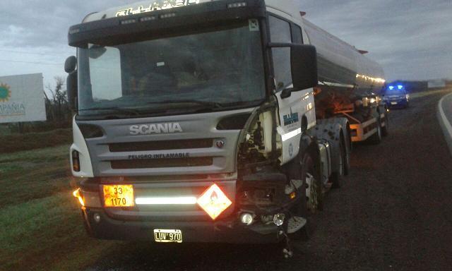 Ruta Nº 8: Accidente entre un camión y un vacuno