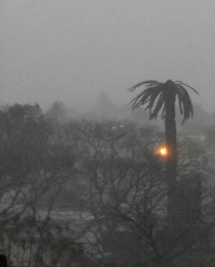 VIDEOS Y FOTOS: Lluvia y viento sobre la ciudad