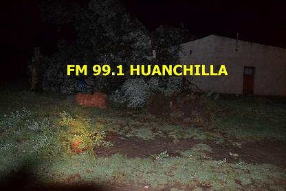 Caída de árboles y ramas en la localidad de Huanchilla