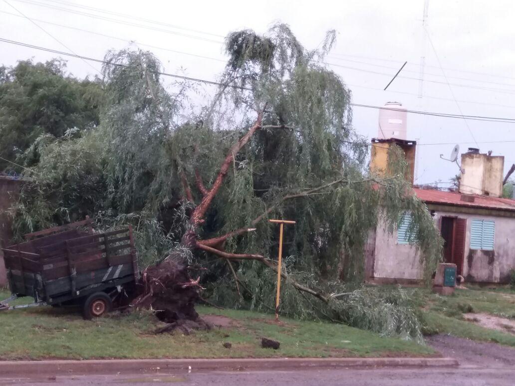 Fuerte tormenta de viento sobre la ciudad