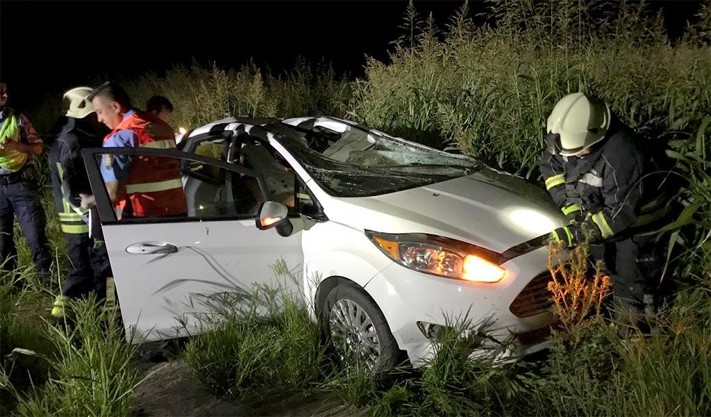 Un auto chocó contra un equino en cercanía de Monte de los Gauchos
