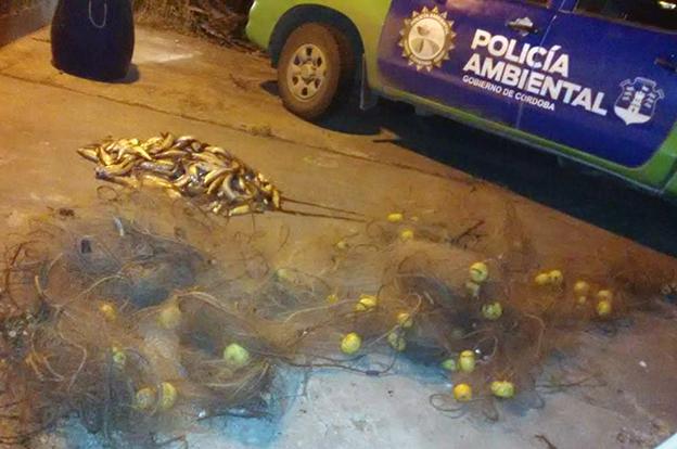 Detectan pescador furtivo de la localidad de Miramar