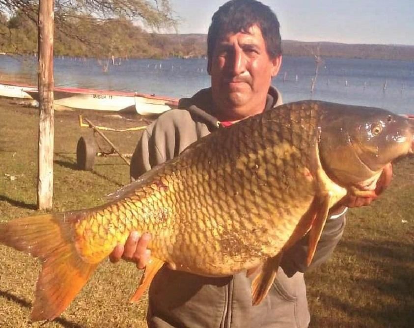 Pescaron en el dique Cruz del Eje una carpa de casi 20 kilos y un metro de largo