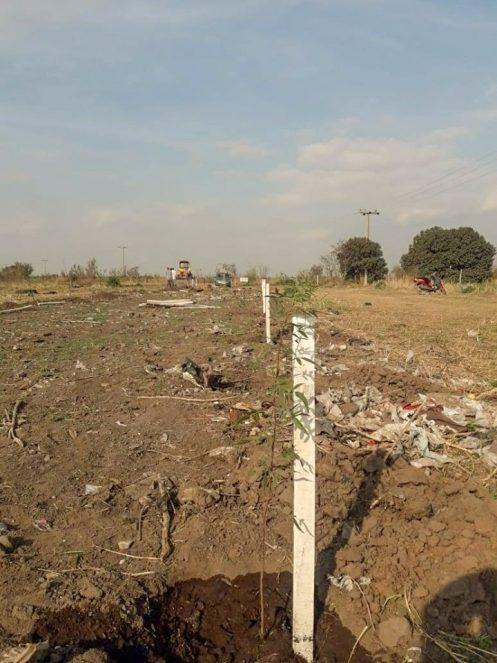 LA PAQUITA: restauran ecológicamente el antiguo basural
