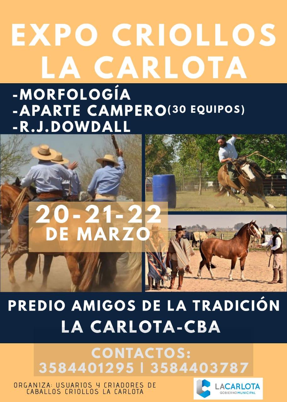 LA CARLOTA: aparte campero y exposición de caballos criollos
