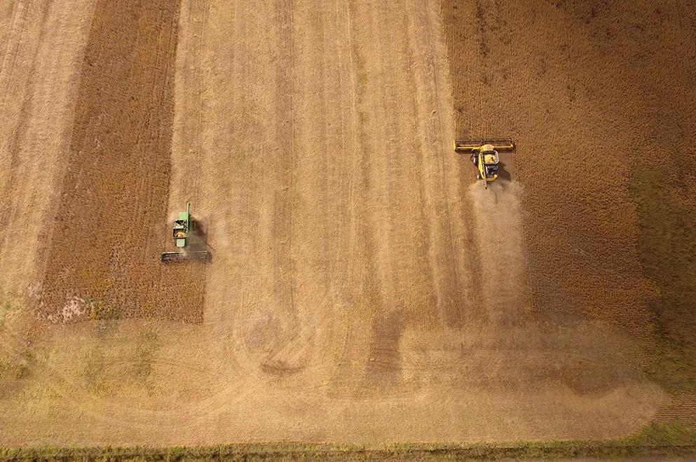 Actividad agropecuaria: Declaración Jurada para circular