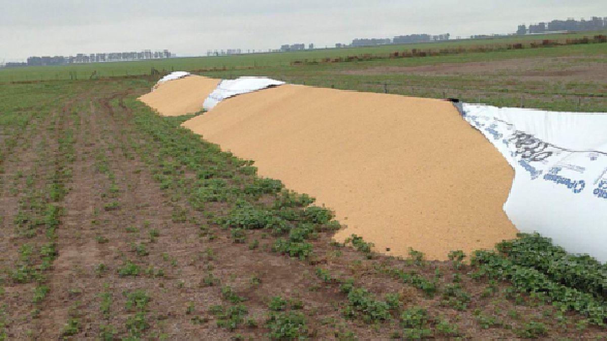 CRA repudió nuevos ataques a silobolsas llenos de cereales en los campos