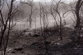 LA CALERA: lograron extinguir el incendio