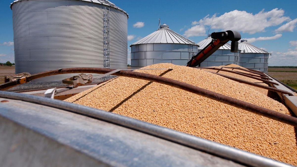 Martín Guzmán anunció rebaja en las retenciones a la soja y compensación a productores