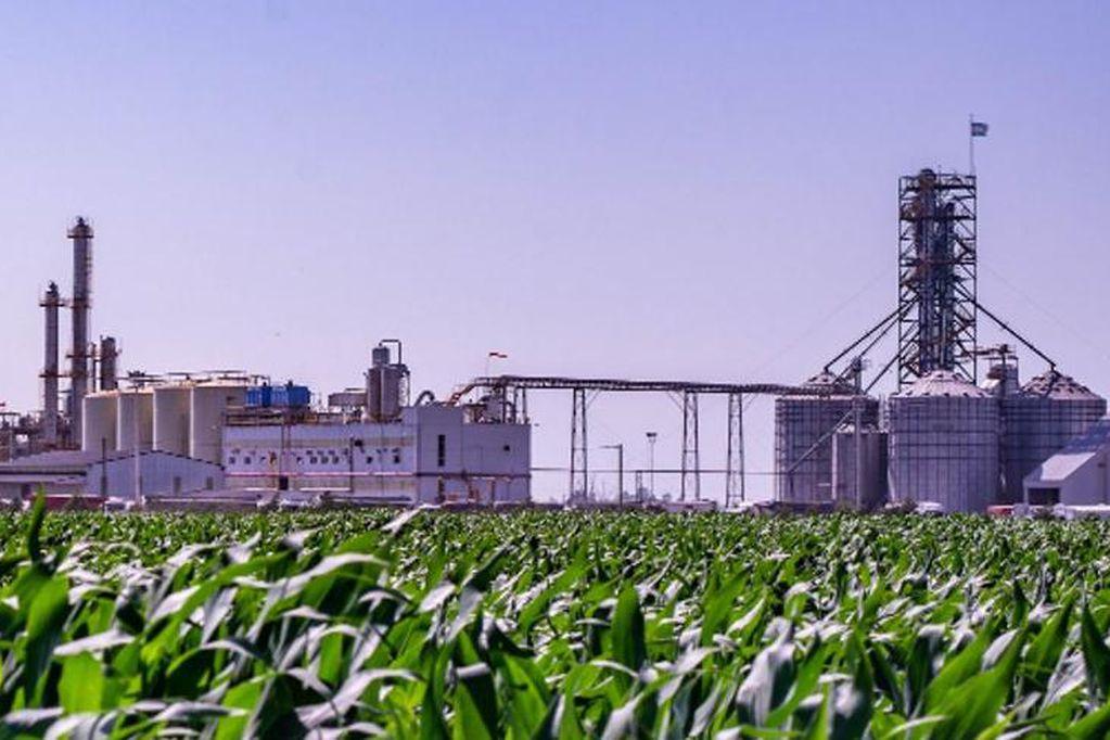 Biocombustibles: el Gobierno extendió el régimen actual hasta el 27 de agosto