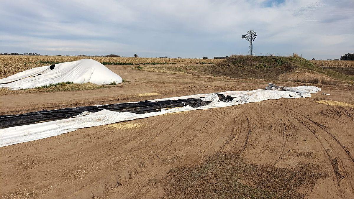 Cayó una banda que robó casi 300 toneladas de soja en Buchardo